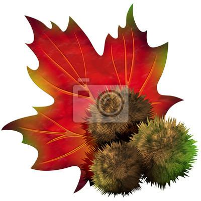 Castagna Foglia - Chestnut Leaf - Feuille Châtaigne