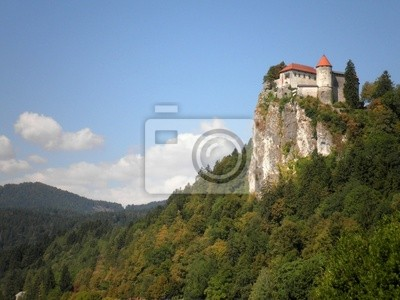 Wall mural Castle on a Cliff