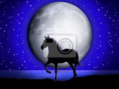 Cavallo e Luna-Horse and Moon-Cheval et Lune-2
