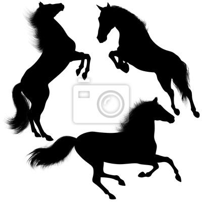 Cavallo selvaggio Sagome-Wild Horse shapes-Cheval Silhouette-2