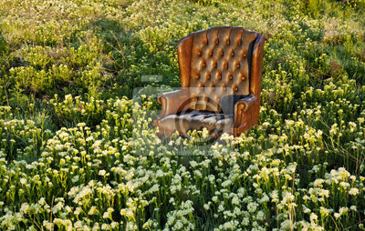 Wall mural Chair in a field of flowers