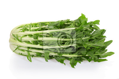 Wall mural Chicory or catalogna salad on white with clipping path