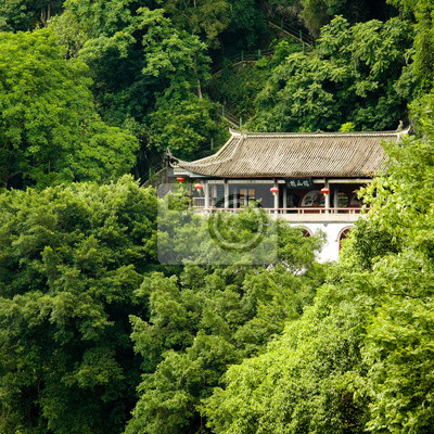 Chinese building in lush junlge