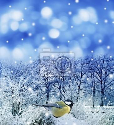 christmas card with little bird