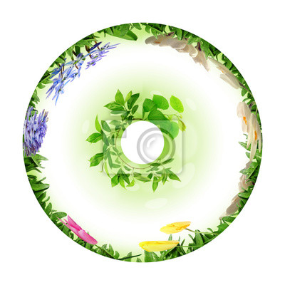 circle from grass and flowers on white background