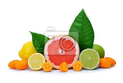 Citrus fruits ( Grapefruit, Lemon, Lime, Kumquat ) isolated on white background.