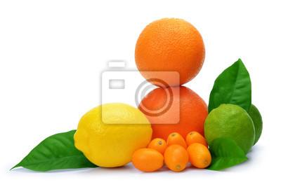 Citrus fruits ( Orange, Grapefruit, Lemon, Lime, Kumquat ) isolated on white background.