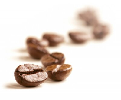 Wall mural Coffee Beans draw a zigzag line isolated on white.