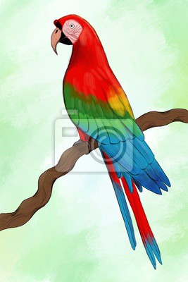 Wall mural colorful parrot on a branch