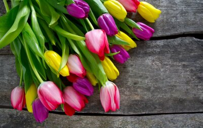 Wall mural colorful tulips on wooden surface