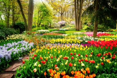 Wall mural Colourful Tulips Flowerbeds and Path in an Spring Formal Garden, retro toned