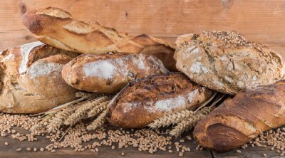 Wall mural Composition of various breads