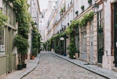 Wall mural Cozy street in Paris, France