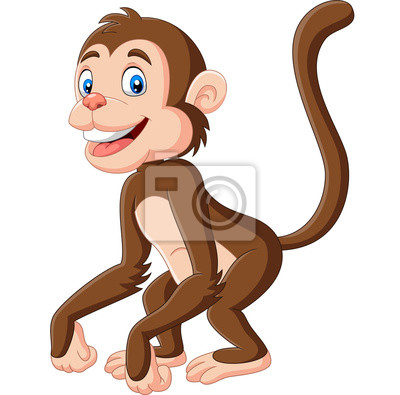 Cute baby monkey cartoon on white background