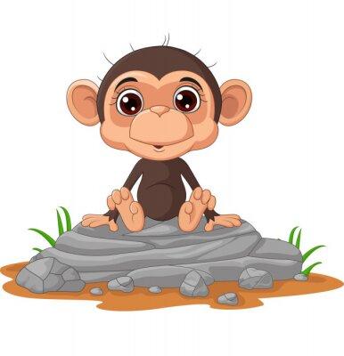 Cute baby monkey cartoon sitting on the rock