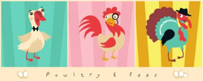 Wall mural Dandy Poultry