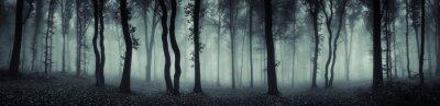 Wall mural dark forest panorama fantasy landscape