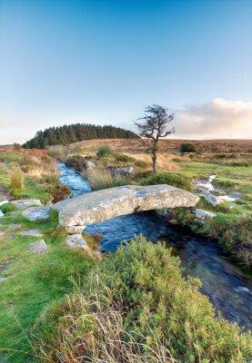 Wall mural Dartmoor National Park