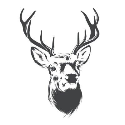 Wall mural Deer Head