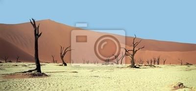 Died tree in desert