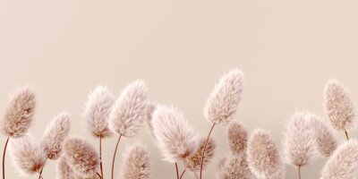 Wall mural Dry fluffy flowers beige pastel color boho background 3d rendering. Abstract Pampas grass isolated - calm floral wallpaper.