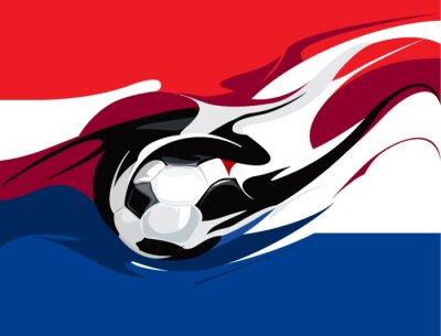 Wall mural Dutch football