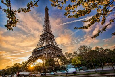Wall mural Eiffel Tower against sunrise  in Paris, France