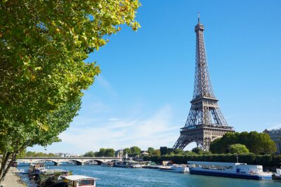 Wall mural Eiffel tower and Seine river view with green tree branches, sunny