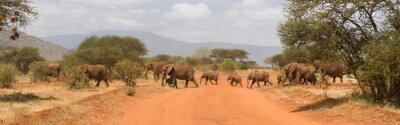 Wall mural Elephants in Tsavo East National Park