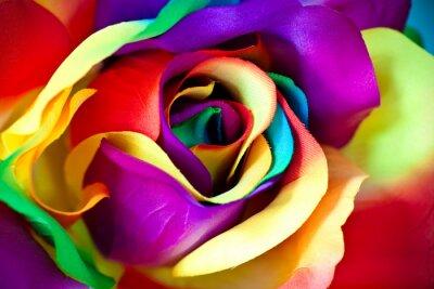 Wall mural fake rose flower