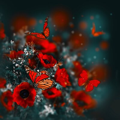 Wall mural Field of poppies and green grass and butterfly