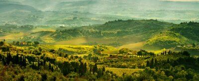 Wall mural Fields in Tuscany