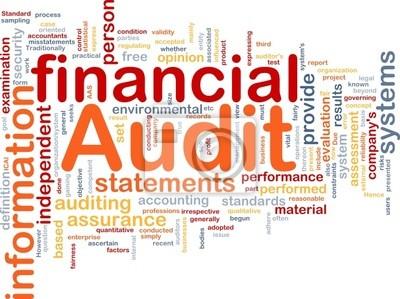 Financial audit is bone background concept