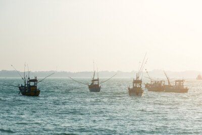 Wall mural Fishing boats