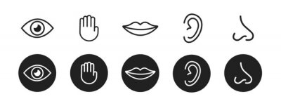 Wall mural Five senses vector icons set. vision, hearing, touch, taste, smell