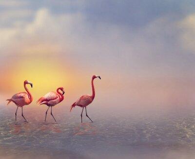 Wall mural Flamingo Birds