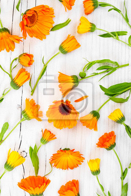 Flat lay composition with flowers marigold on rustic wooden back