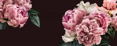 Wall mural Floral banner, flower cover or header with vintage bouquets. Pink peonies, white roses isolated on black background.