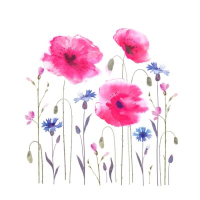 Wall mural Floral glade with poppies and cornflowers.