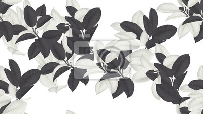 Wall mural Floral seamless pattern, black and white Ficus Elastica / rubber plant on white background