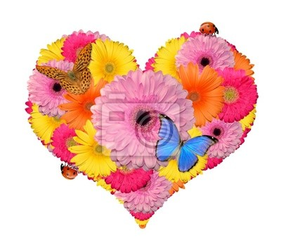 flower heart with butterfly and ladybug
