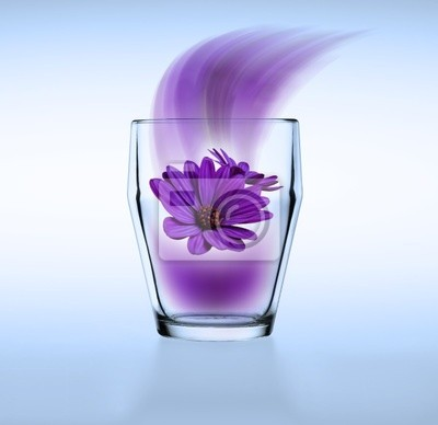 flower in my glass