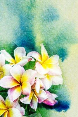 Wall mural Flower watercolor illustration.