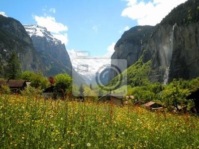 Flowers in Swiss Valley