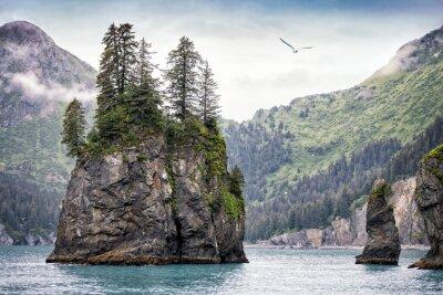 Wall mural Foggy Day, Kenai Fjords National Park, Alaska, USA