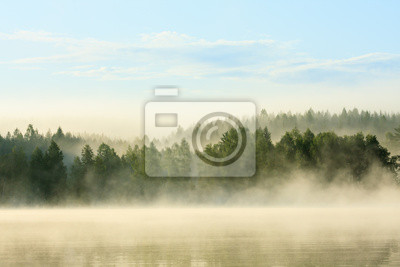 Wall mural foggy forest and lake at dawn