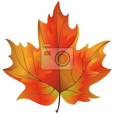 Foglia Autunno-Autumn Leaf-Vector