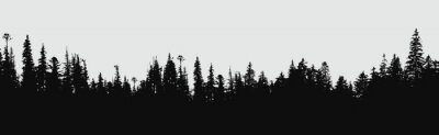 Wall mural forest silhouette background.