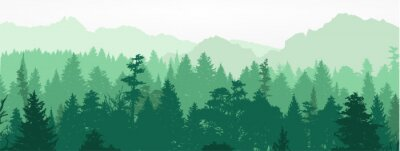 Wall mural Forest silhouette, vector illustration.