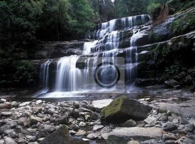 Forest waterfall in Australia